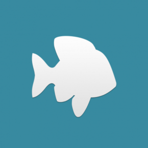 Plenty of fish online dating app